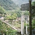 Qingquan20140401.jpg