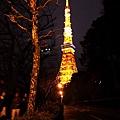 Tokyo_1124.jpg