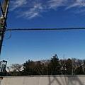 Tokyo_1250.jpg