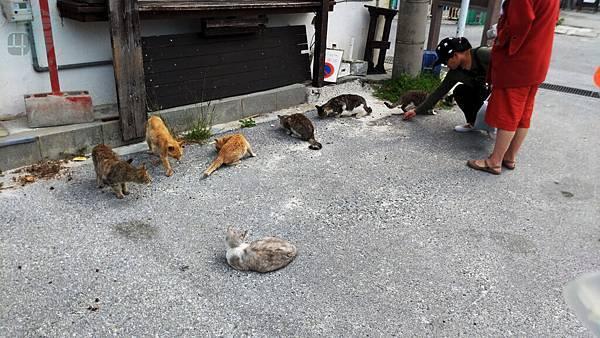 Okinawa_20180302.jpg