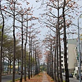 Tainan3401.jpg