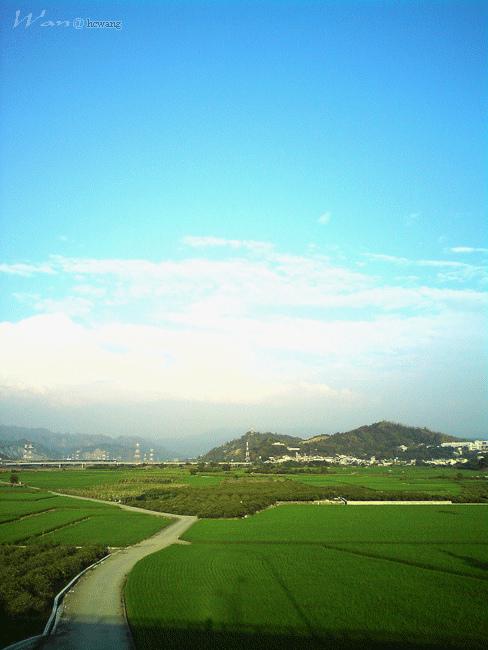 稻田與陽光