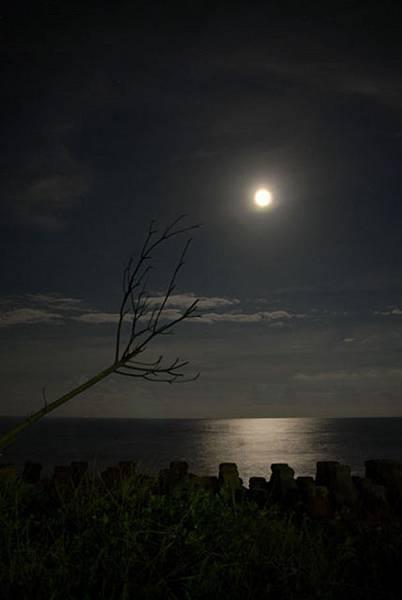民宿外的海景月色