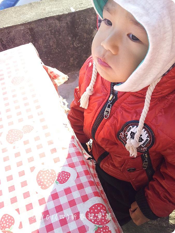 2015-01-01-15-03-40_photo.jpg