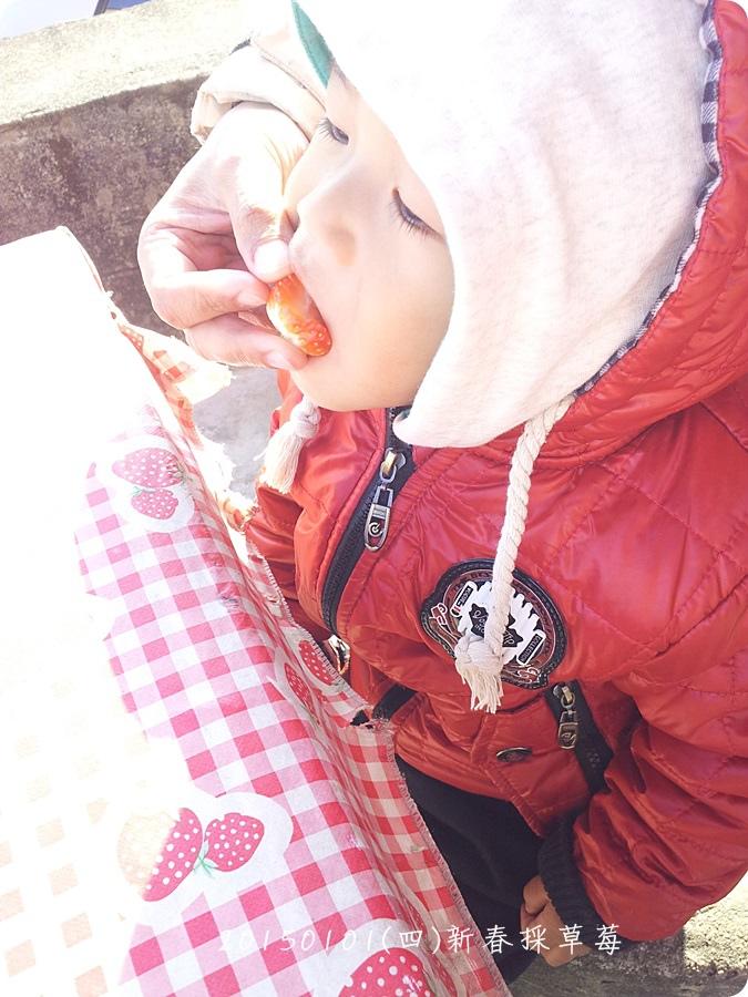 2015-01-01-15-03-43_photo.jpg