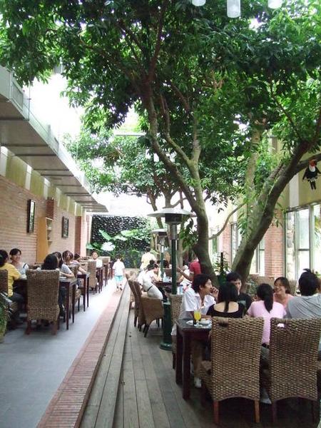 餐廳裝潢很特別,直接把大樹下蓋在屋內喔