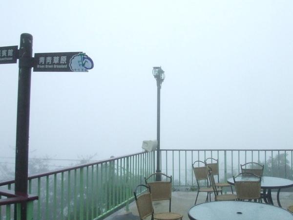 開了三個多小時,終於到達清境啦~但這霧,也太大了吧