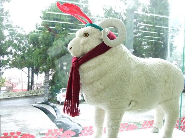 山上的萊爾富一定要這麼帥氣嗎,在台上擺這什麼怪羊,笑死我們了