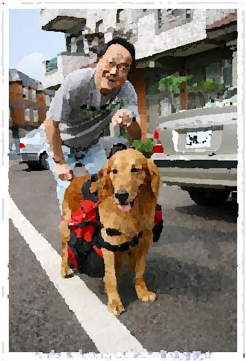 08/04/28(六)GABI開心送養