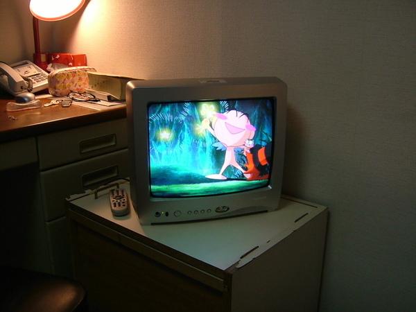 哈哈,房間終於有電視了,開心~來張紀念照!
