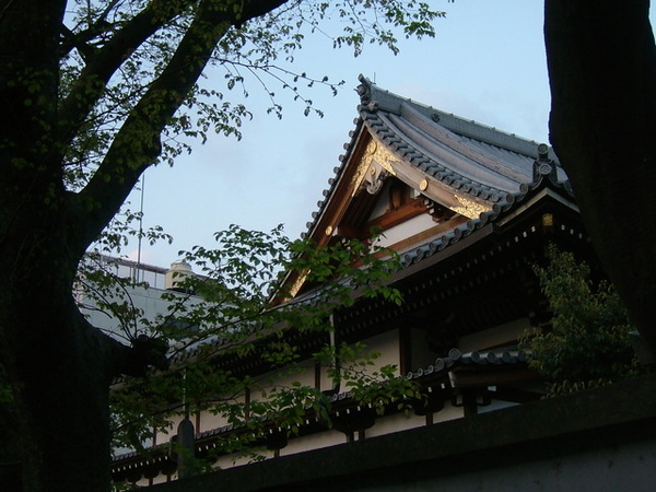 從另一條不同的路回宿舍,終於看到我以為是神社的的建築的另一面