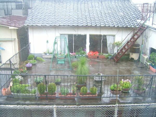 就在我要到宿舍時,突然開始下起大雨,大家感覺得到嗎?