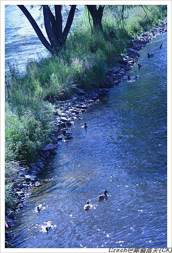 跟小蔥兩人一路逛到河邊
