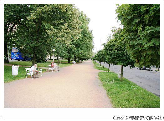 公園有很漂亮的綠景