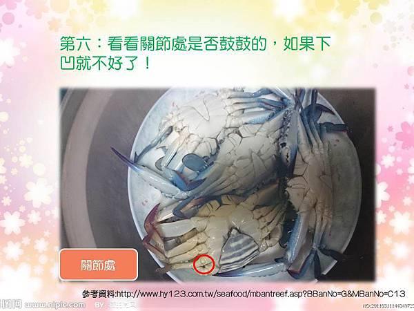 愛吃螃蟹的您,知道如何挑螃蟹嗎? │五互龍海