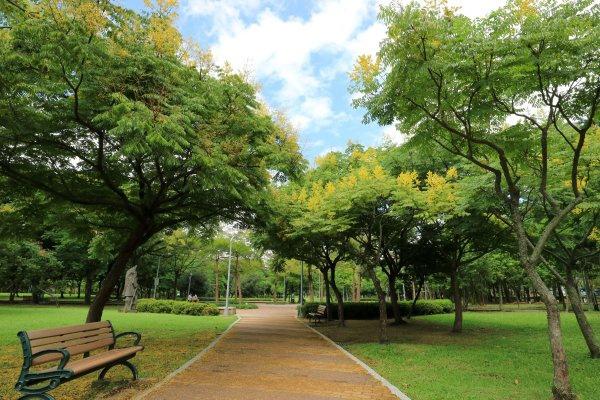 大安森林公園1