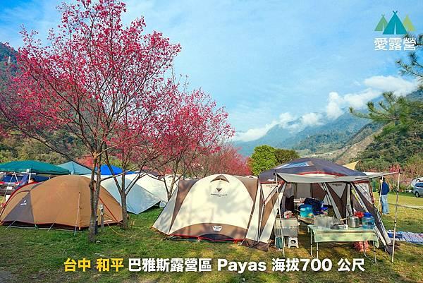 Payasの家露營區