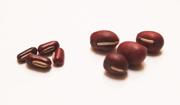 rice-bean.jpg