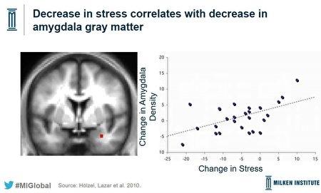 meditation-brain-benefit-03-450x271.jpg