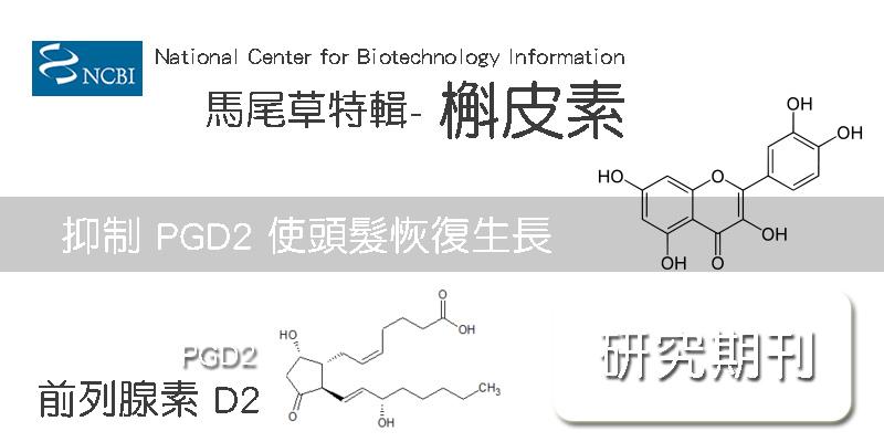 Horsetail馬尾草特輯 – 關於 槲皮素 Quercetin 植源性類黃酮化合物