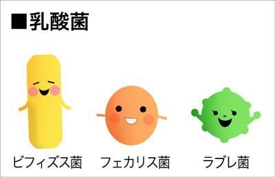 BLOG乳酸菌1