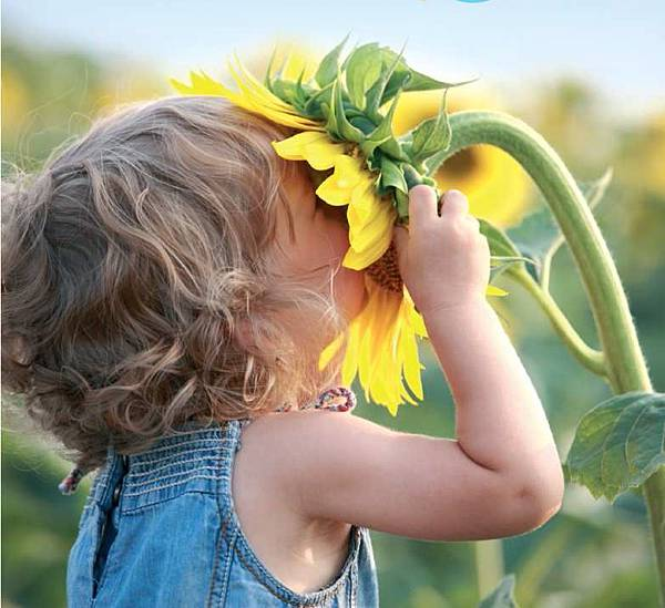 BLOG-小孩向日葵
