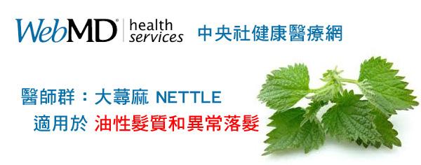 中央社醫療網-NETTLE大蕁麻有效治療異常落髮