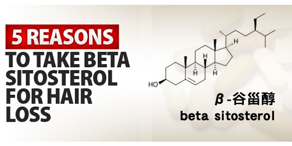 β-谷甾醇(beta sitosterol)治療掉髮
