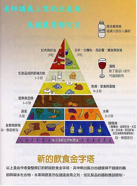 新的飲食金字塔.jpg