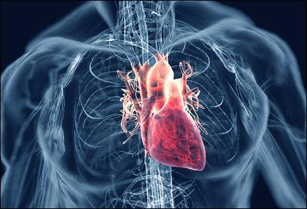 高血壓 心臟病