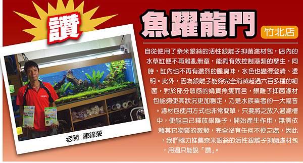 魚躍龍門竹北