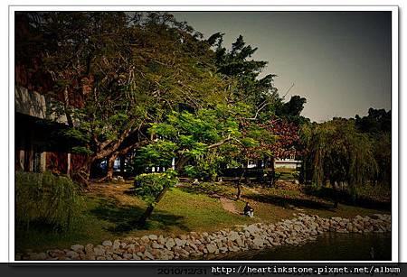 文化中心與巴克禮(20101231)7