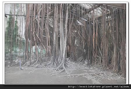安平樹屋(20101126)24