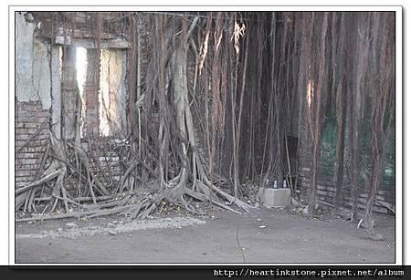安平樹屋(20101126)44