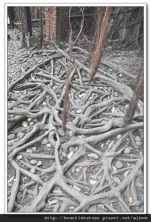 安平樹屋(20101126)49