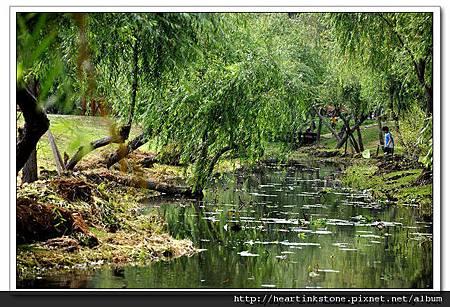 巴克禮公園(20100515)10