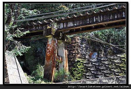 阿里山-鐵道2