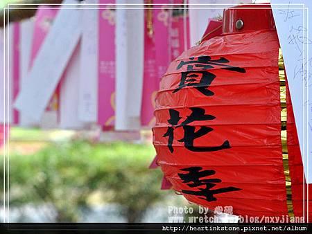 2010府城賞花季1