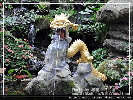 2010春節記實(四23