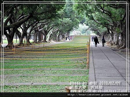 文理大道(20100207)3