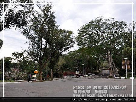 東海大學隨拍(20100207)6