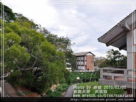 東海大學隨拍(20100207)15
