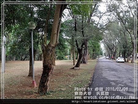 東海大學隨拍(20100207)18