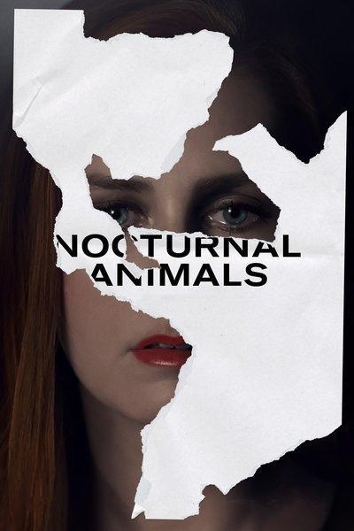 夜行動物-Nocturnal Animals.jpg