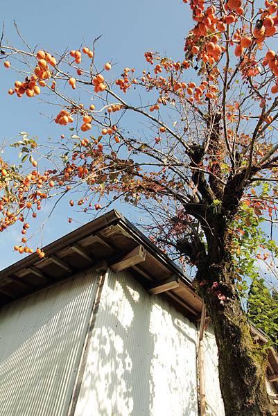 2011-京都之旅-前往寂光院途中-04.jpg
