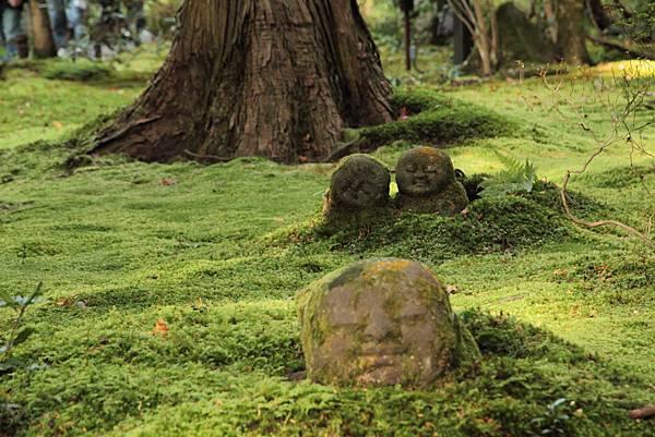 2011-京都之旅-三千院-躲起來的小沙彌-01.jpg