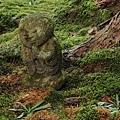 2011-京都之旅-三千院-躲起來的小沙彌-03.jpg
