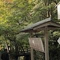 2011-京都之旅-前往寶泉院途中-01.jpg