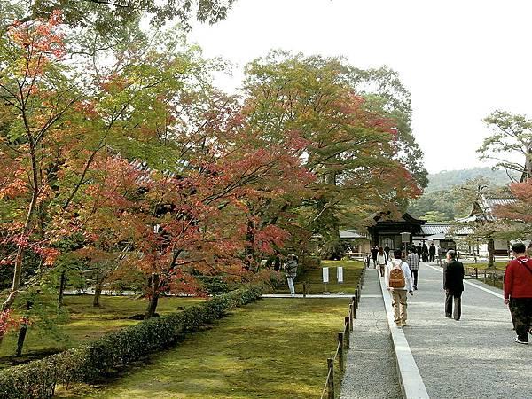 2011-京都之旅-第四天-前往鹿苑寺-05.jpg