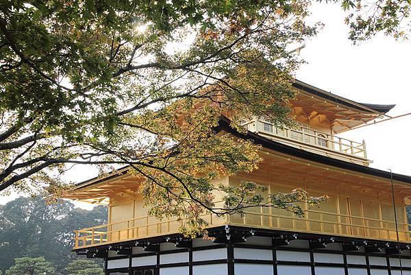 2011-京都之旅-第四天-鹿苑寺-05.jpg